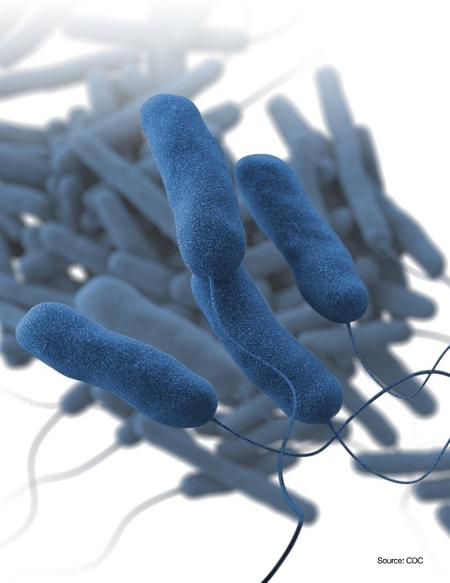 Legionnaires' Disease in Northern NJ: A Possible Link to Water Treatment Failures?